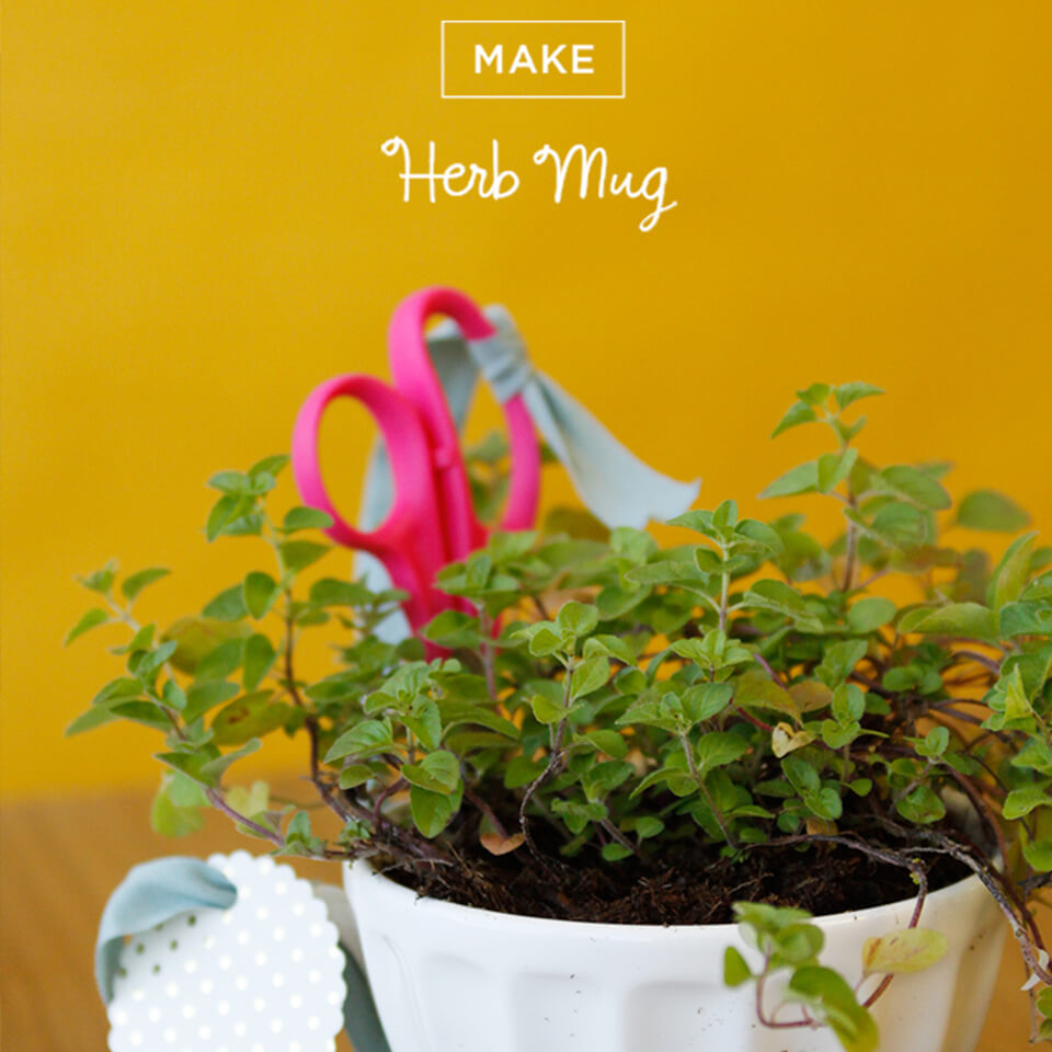 HERB MUG: THE GIFT THAT KEEPS ON GROWING