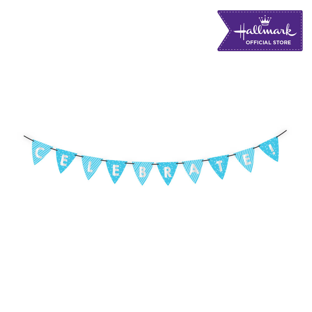 Hallmark Party! Party! Blue Celebrate Birthday Banner Party Decor